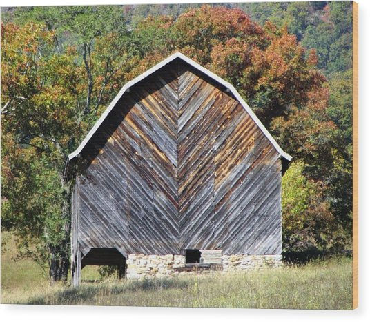 Unique Barn Wood Print by Christine Bradley