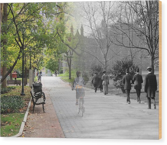 University Of Pennsylvania Walk Wood Print