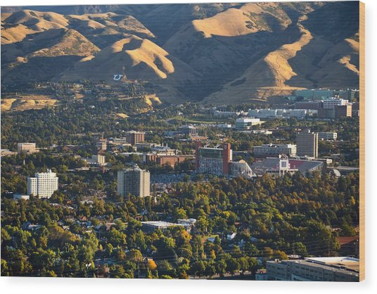 University Of Utah Campus Wood Print