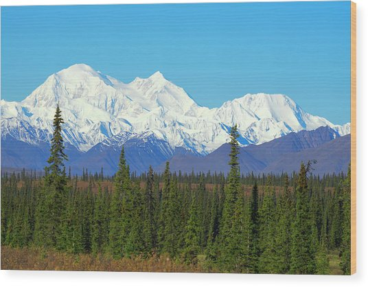 Unofficially Called Denali, Mt Wood Print