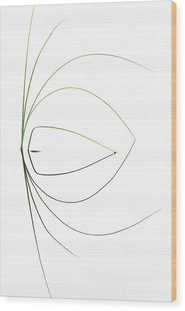 Untitled Wood Print by Dirk Heckmann