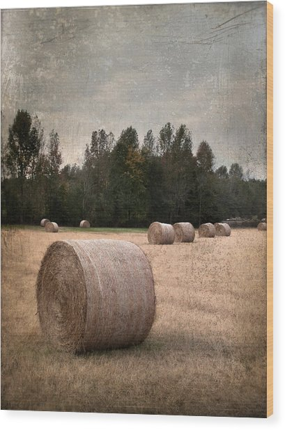 Untitled Hay Bale Wood Print by Robert Tolchin