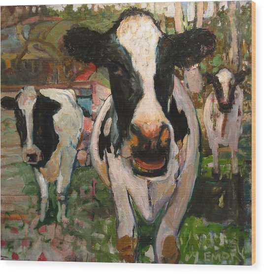 Up Front Cows Wood Print