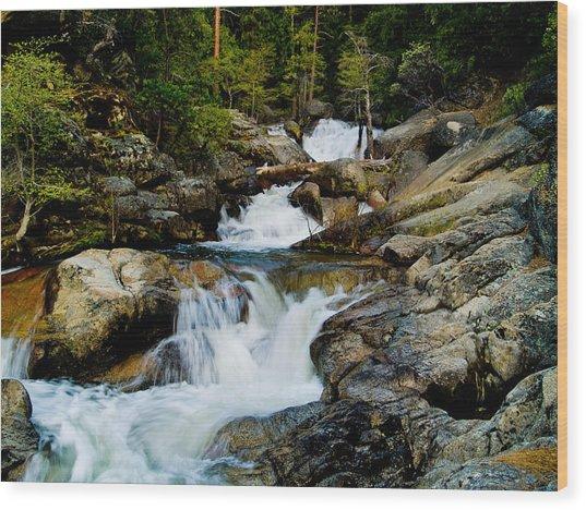 Up The Creek Wood Print