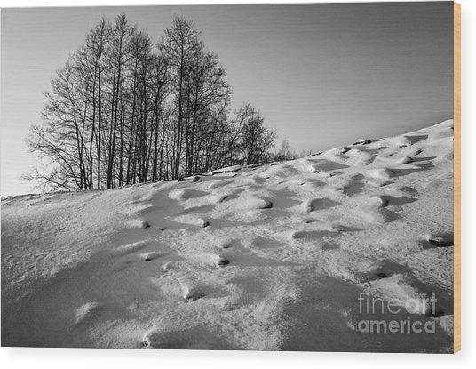 Up To The Hill Bw Wood Print