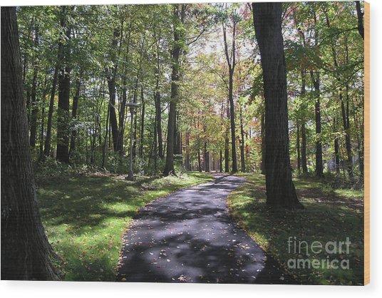 Upj Campus Path Wood Print
