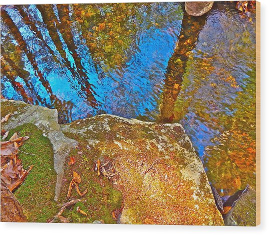 Upland Trail 2014 106 Wood Print