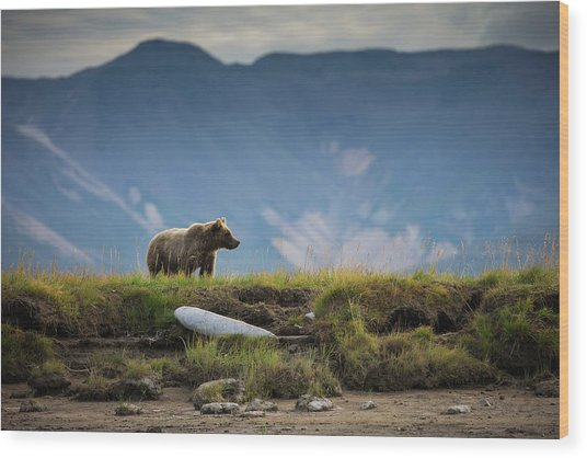 Upon The Bluff Wood Print by Chase Dekker Wild-life Images