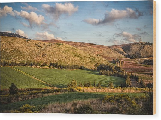 Upper Galilee Wood Print