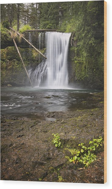 Upper North Falls Wood Print