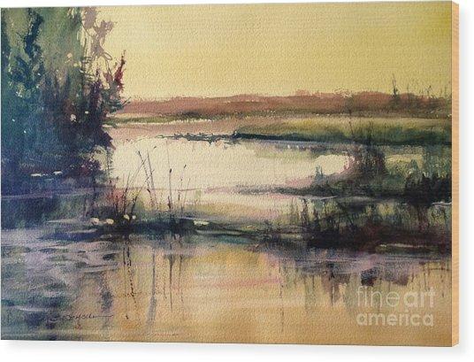 Upper Penninsula Marsh Wood Print