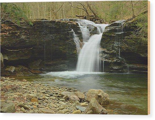Upper Twin Falls #1 Wood Print