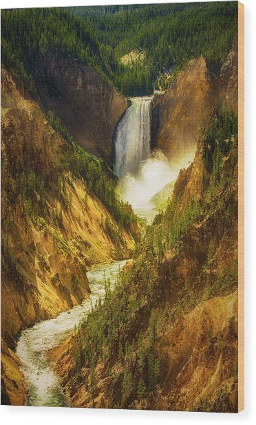 Upper Yellowstone Wood Print by Stuart Deacon