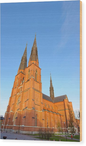 Uppsala Cathedral In Sweden - Glowing In The Evening Light Wood Print
