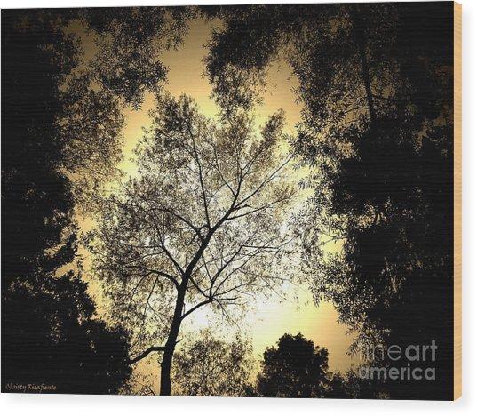 Upward Wood Print