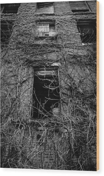 Urban Decay Wood Print by David Pinsent