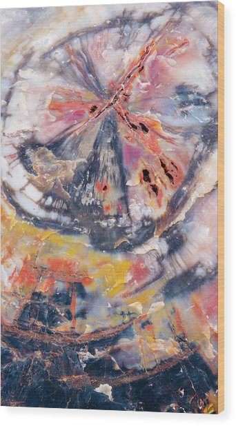 Usa, Arizona, Petrified Forest National Wood Print by Jaynes Gallery