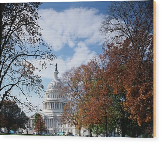 Usa, Washington Dc, View Of Capitol Wood Print