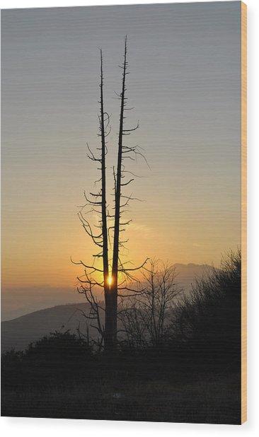 V Wood Print