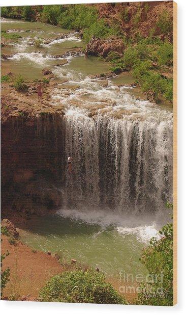 Vacation At Lower Navajo Falls Wood Print