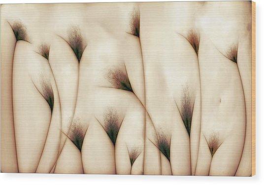 Vaginae Terram Wood Print by Carlos P. Vazquez