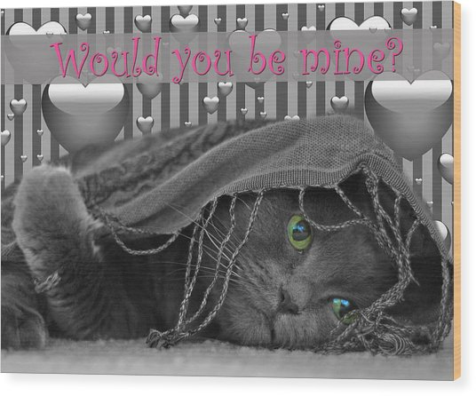 Valentine Day Cat Wood Print by Joann Vitali