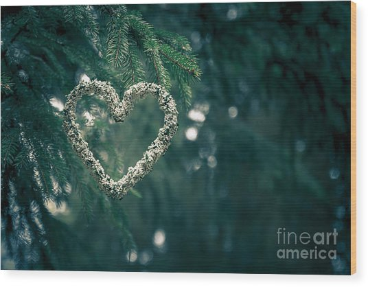 Valentine's Day In Nature Wood Print