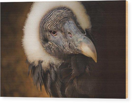 Vallerie Wood Print