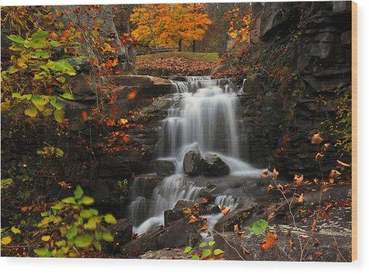 Valley Falls West Virginia Wood Print