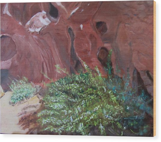 Valley Of Fire State Park Wood Print