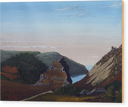 Valley Of Rocks Devon Wood Print by Richard Taylor