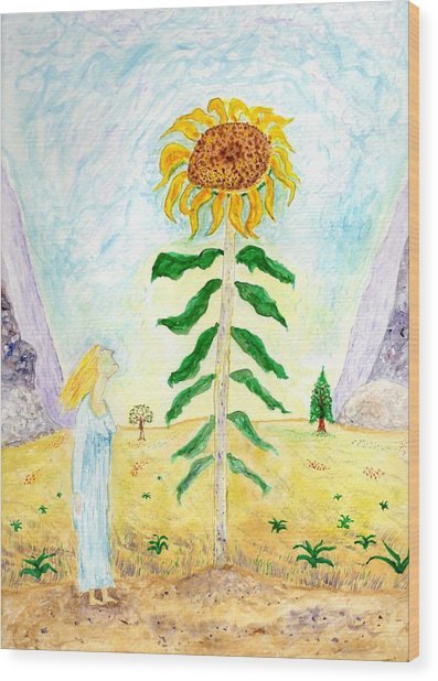 Valley Of The Mammoth Sunflowers Wood Print