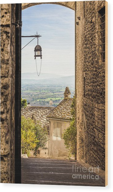 Valley Outside Assisi Wood Print