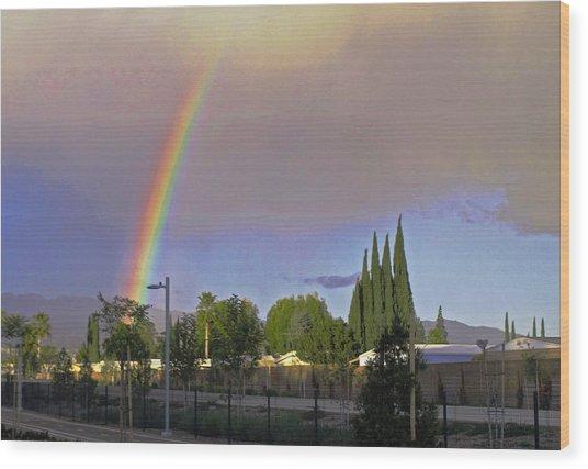 Valley Rainbow 3 Wood Print