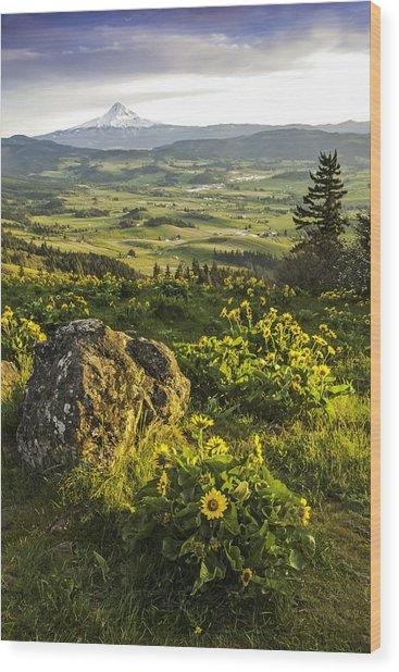 Valley Vista Wood Print