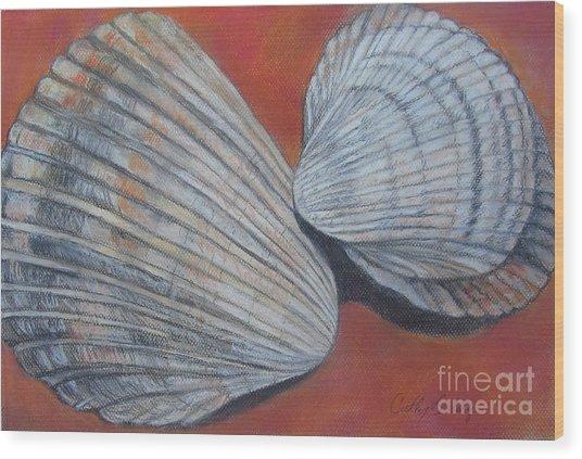 Van Hyning's Cockle Shells Wood Print