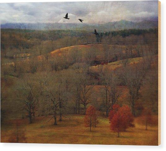 Vanderbilt View Wood Print