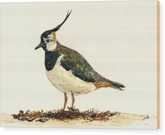 Vanellus Vanellus Wood Print