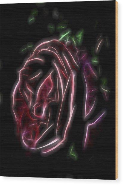 Velvet Rose 1 Wood Print