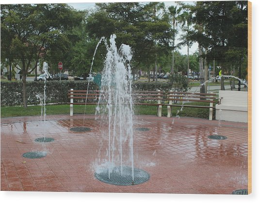 Venice Florida Fountain Wood Print