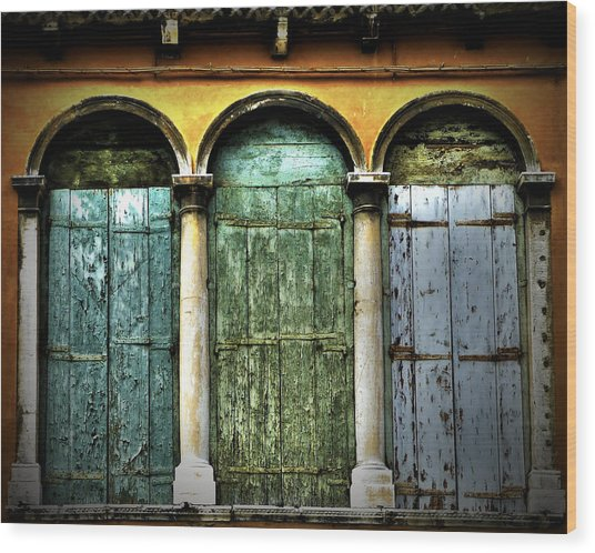 Wood Print featuring the photograph Venice Italy 3 Doors by Gigi Ebert