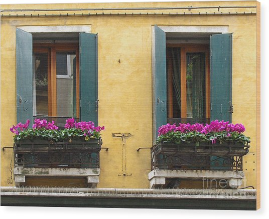 Venice Italy Teal Shutters Wood Print