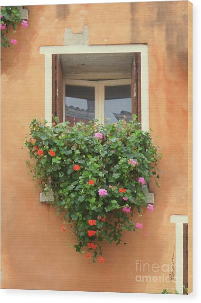Venice Shutters Flowers Orange Wall Wood Print