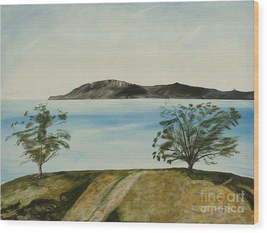 Ventura's Two Trees With Santa Cruz  Wood Print
