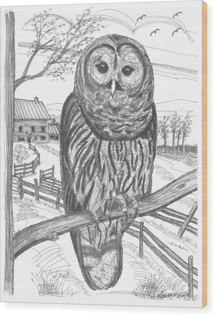 Vermont Barred Owl Wood Print