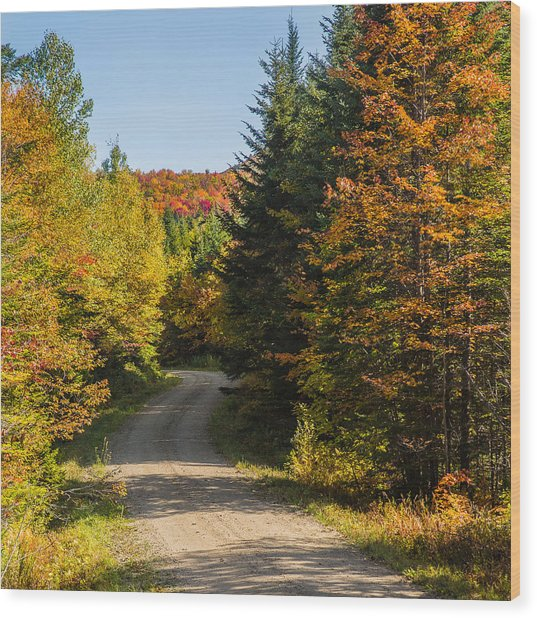 Vermont Country Road Wood Print