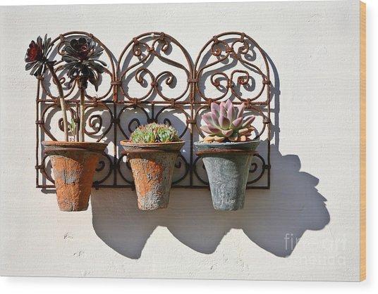 Vertical Cacti Garden Wood Print