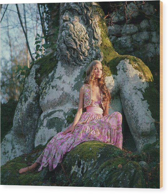 Veruschka Von Lehndorff Sitting On A Sculpture Wood Print