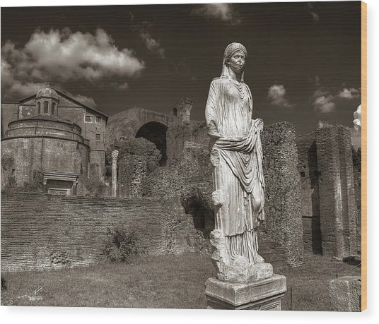 Vestal Virgin Courtyard Statue Wood Print