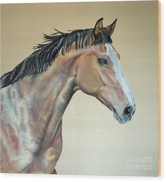 Veterinarian's Warm Blood Horse Wood Print by Ann Marie Chaffin